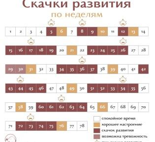 Скачки роста у детей до года: календарь и симптомы