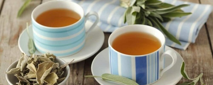 Зеленый чай при грудном вскармливании: можно или нельзя?